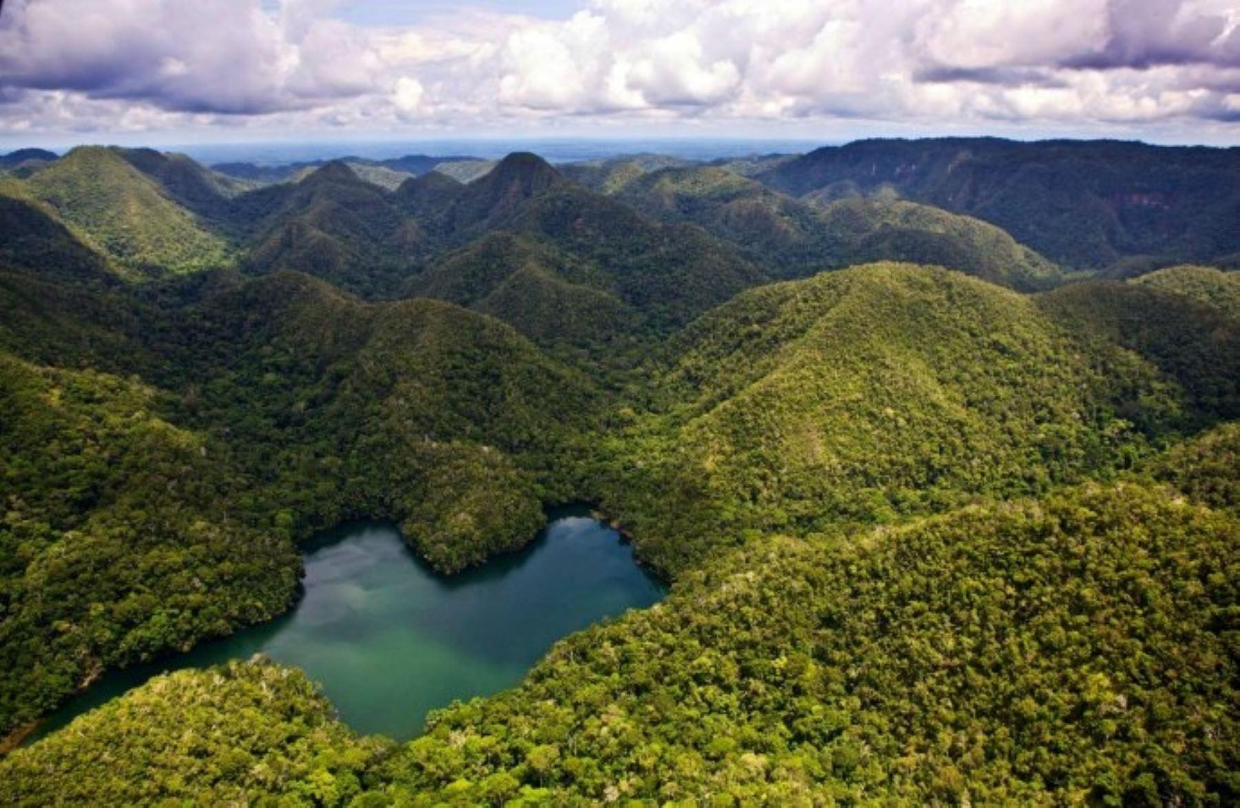 Новый национальный парк открылся в Перу
